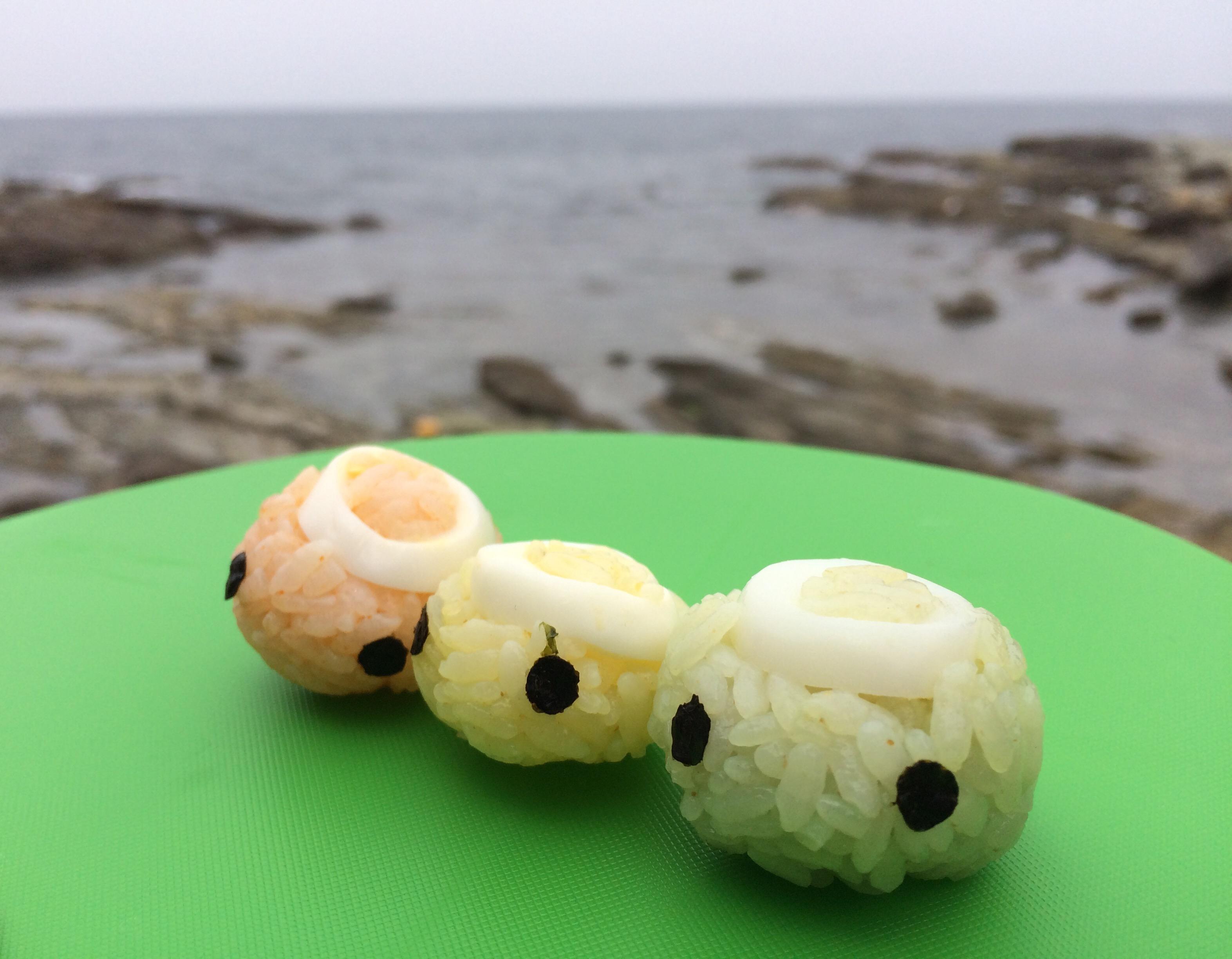 ジオパークの海で桜の季節に花より団子