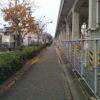 紅い並木通りを駆け抜けるの巻(ΦωΦ)