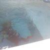 昼下がりのプールでライセンスコースなう!