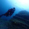 秋の海底を沖まで探索してみるの巻ヽ(^o^)丿