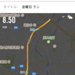 2017ラストランかなぁ〜31は走れるか…(*^^*)…しかし地味な軌跡や!